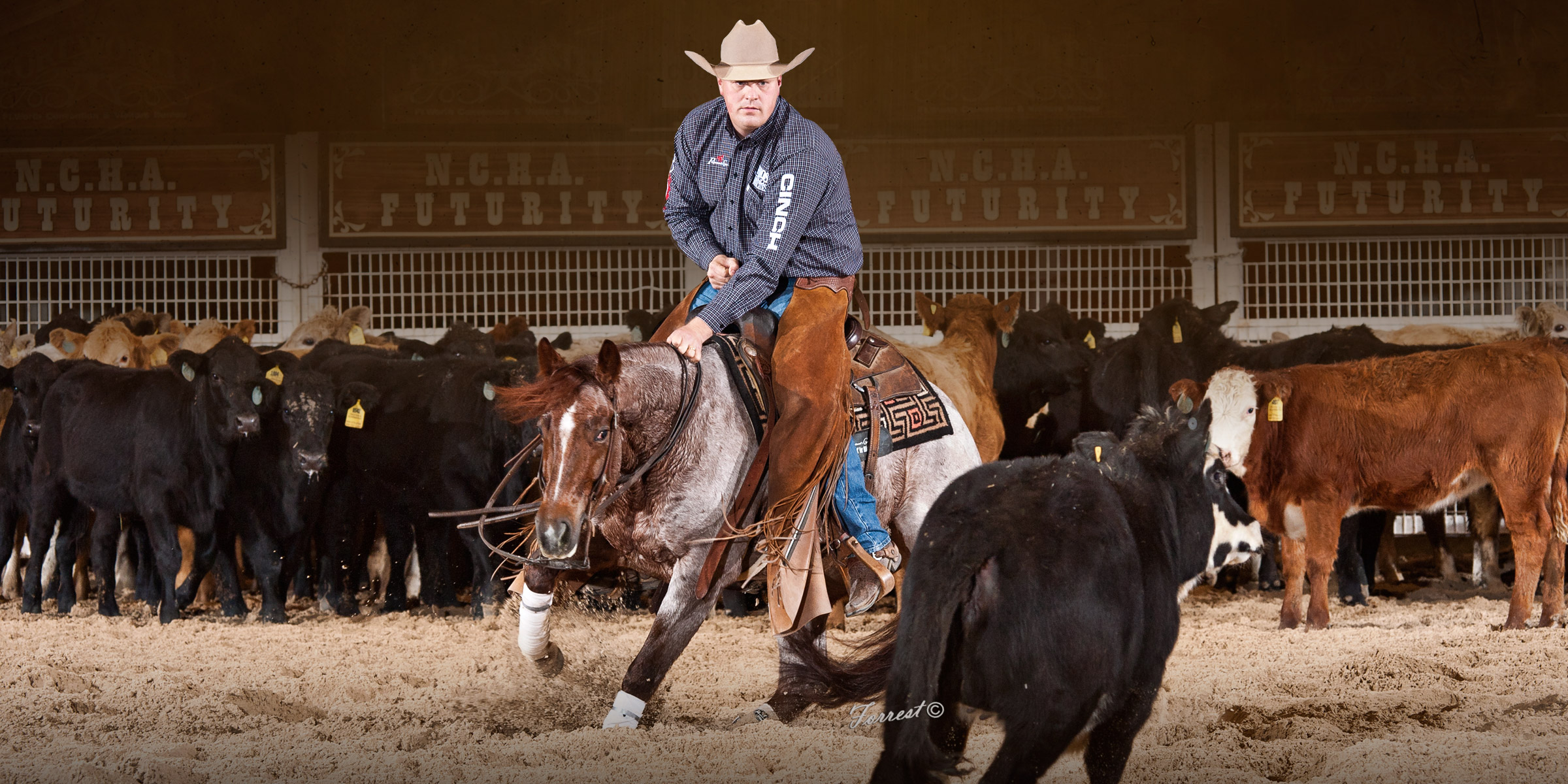 About – Austin Shepard Cutting Horses